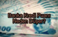 Banka Kredi Puanı Neden Düşer?